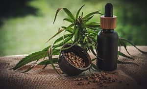 The Right Dosage of CBD for Diabetes